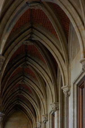 GothicArches_TownHall_3171