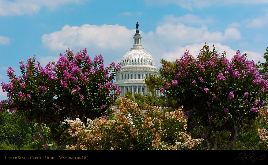 CapitolDome_BloomingMyrtle_5387_16x9