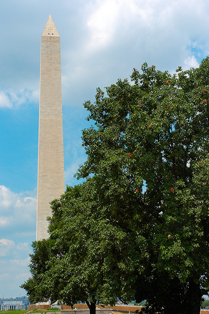 WashingtonMonument_5304