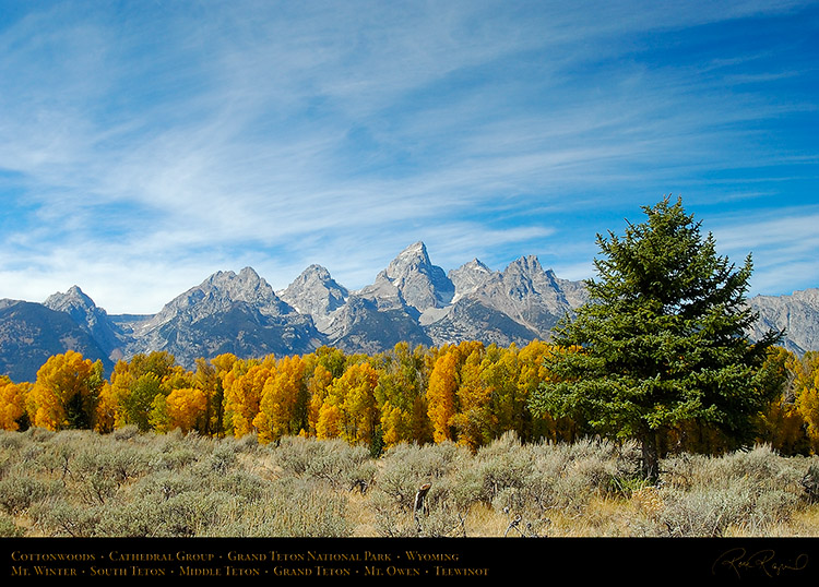 Cottonwoods_CathedralGroup_GrandTetons_1073