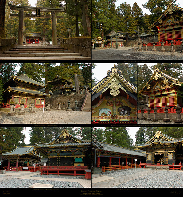 Nikko_Lower_Level_XXL_Ms