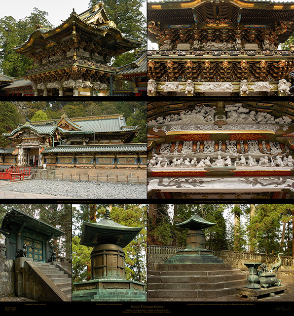 Nikko_Upper_Level_XXL_Ms