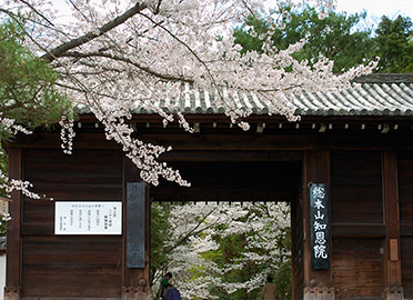 Chion-in_9625