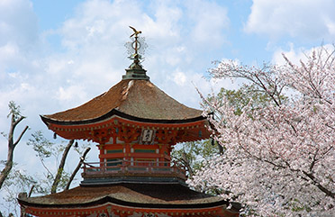 Chukon-do_Kodaiji_9608