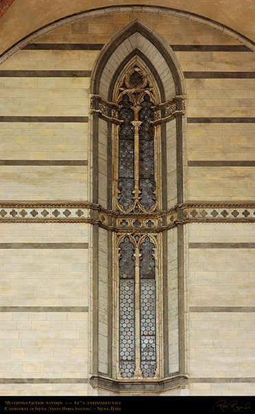 Mullioned_Gothic_Window_Unfinished_Nave_6185