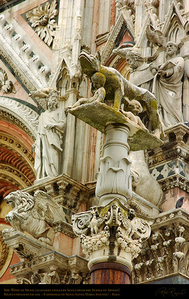 She-Wolf_Siena_Cathedral_6181