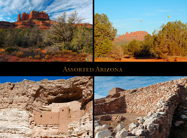AssortedArizona