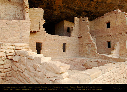 Mesa_Verde_Spruce_Tree_House_Central_Detail_X9788