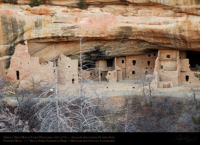 Mesa_Verde_Spruce_Tree_House_X9683