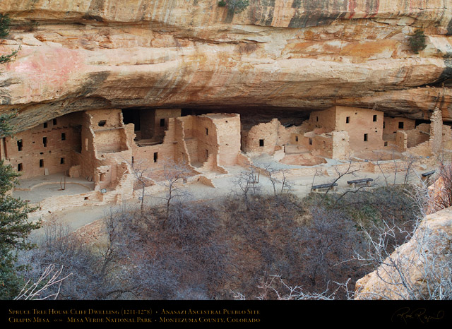 Mesa_Verde_Spruce_Tree_House_X9686