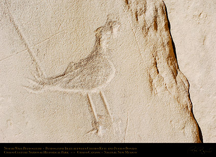 Chaco_Road_Runner_Petroglyph_5161