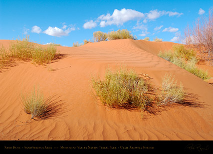 Monument_Valley_Sand_Dune_X1834