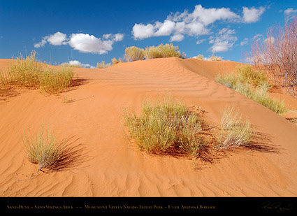 Monument_Valley_Sand_Dune_X1835