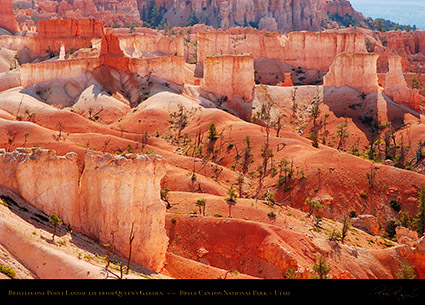 Bryce_Canyon_Landscape_Bristlecone_Point_6680