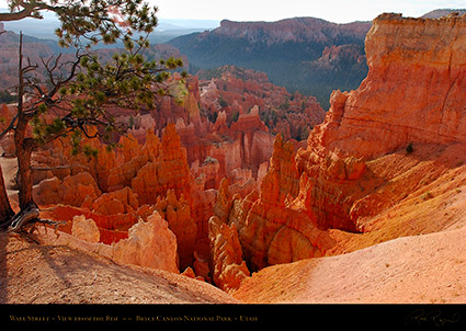 Bryce_Canyon_Wall_Street_Rim_View_1801