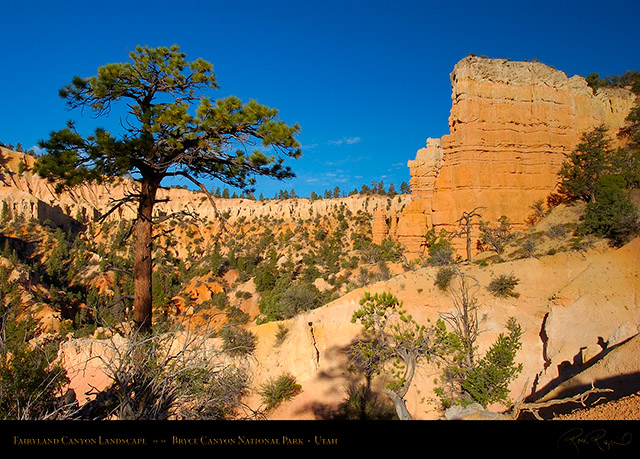 Bryce_Canyon_Fairyland_Canyon_Landscape_6643