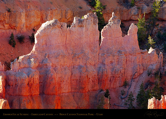 Bryce_Canyon_Fairyland_Fin_at_Sunrise_6631