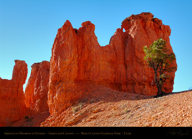 Bryce_Canyon_Fairyland_Hoodoo_at_Sunrise_X1825