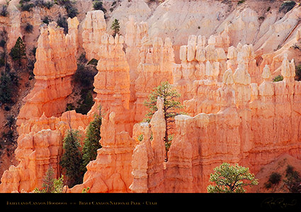 Bryce_Canyon_Fairyland_Hoodoos_6467