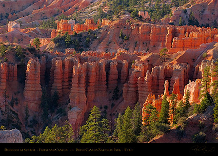 Bryce_Canyon_Fairyland_Hoodoos_at_Sunrise_6605