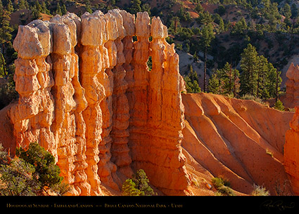 Bryce_Canyon_Fairyland_Hoodoos_at_Sunrise_6615