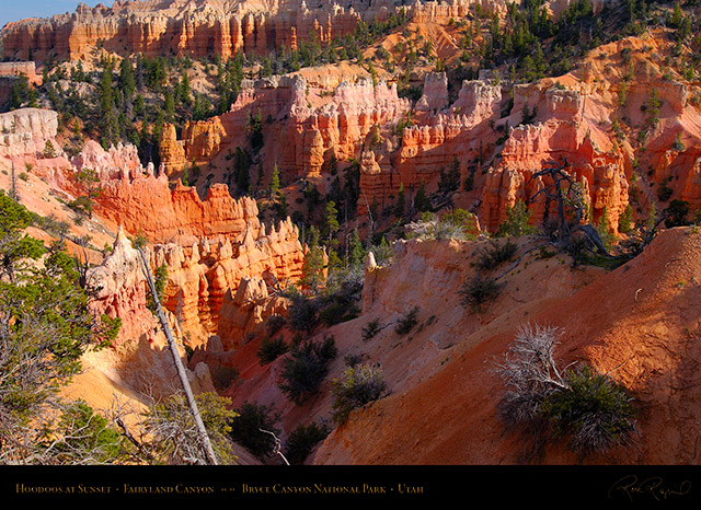 Bryce_Canyon_Fairyland_Hoodoos_at_Sunset_X2113