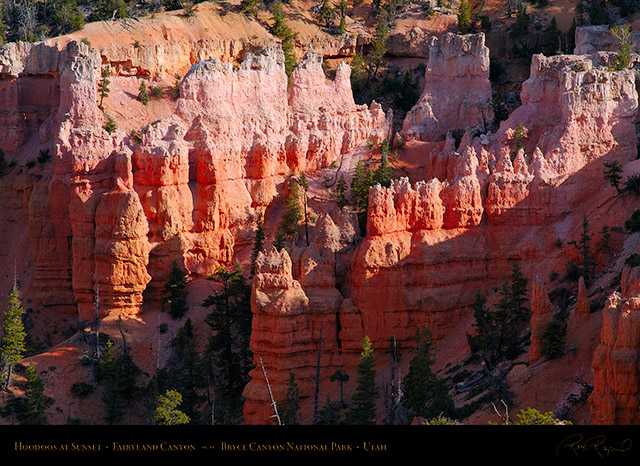 Bryce_Canyon_Fairyland_Hoodoos_at_Sunset_X2115