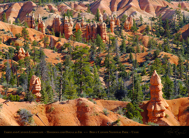 Bryce_Canyon_Fairyland_Landscape_X1851