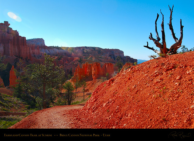 Bryce_Canyon_Fairyland_Trail_at_Sunrise_X1819