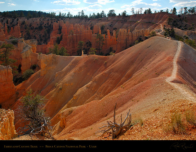 Fairyland_Canyon_Trail_X2107