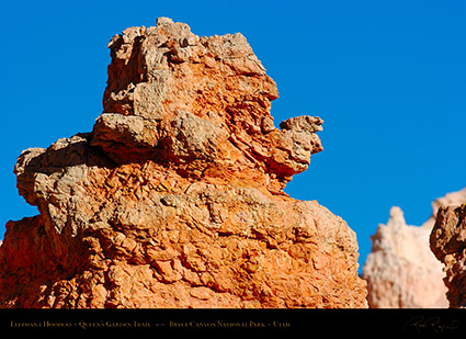 Bryce_Canyon_Elephant_Queens_Garden_5372