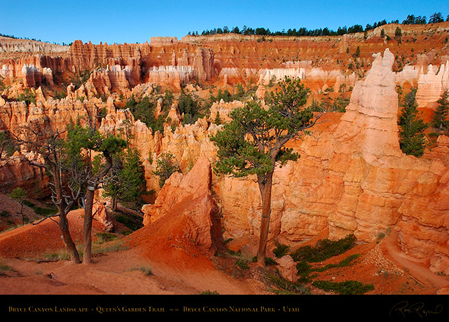 Bryce_Canyon_Queens_Garden_Trail_5589