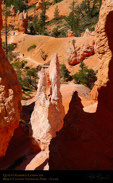 Bryce_Canyon_Queens_Garden_Trail_X2079