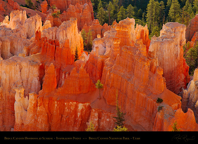 Bryce_Canyon_Hoodoos_at_Sunrise_X1798