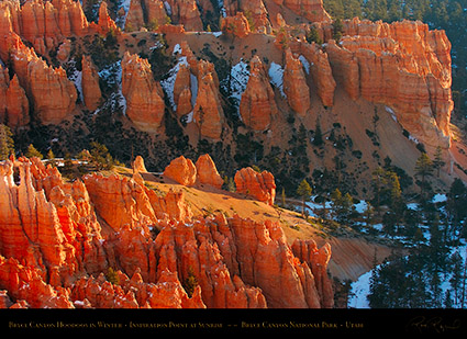 Bryce_Canyon_Hoodoos_at_Sunrise_in_Winter_5490