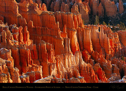 Bryce_Canyon_Hoodoos_at_Sunrise_in_Winter_5501