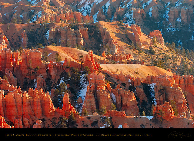 Bryce_Canyon_Hoodoos_at_Sunrise_in_Winter_5522