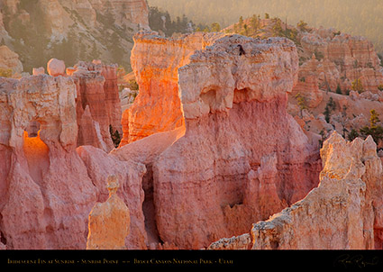 Bryce_Canyon_Iridescent_Fin_at_Sunrise_0474