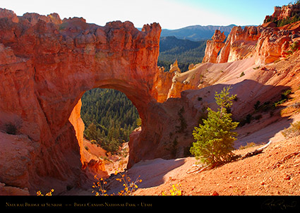 Bryce_Canyon_Natural_Bridge_at_Sunrise_0509