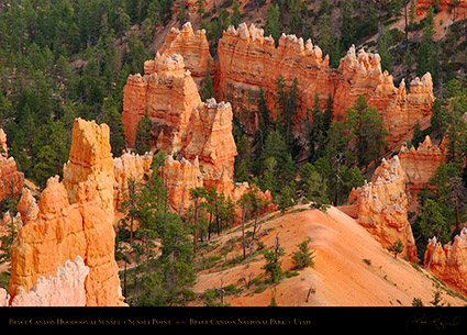 Bryce_Canyon_Hoodoos_Sunset_Point_at_Sunset_6528