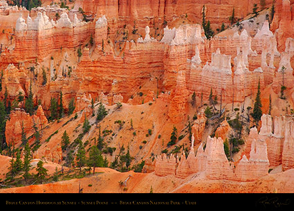 Bryce_Canyon_Hoodoos_Sunset_Point_at_Sunset_6531