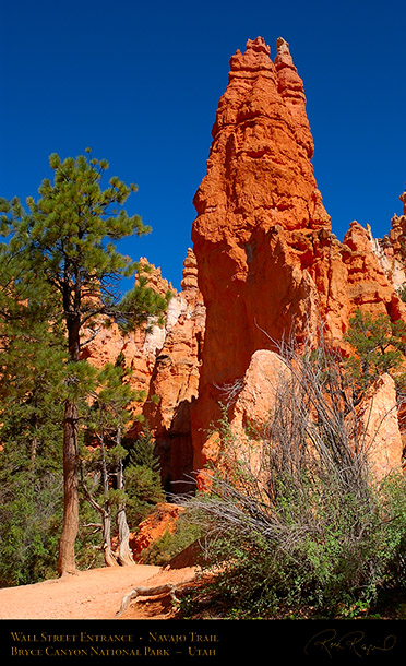 Wall_Street_Entrance_Navajo_Trail_5674
