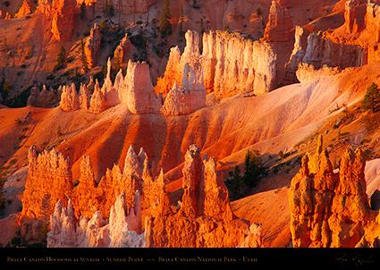 Bryce_Canyon_Hoodoos_Sunrise_Point_0470