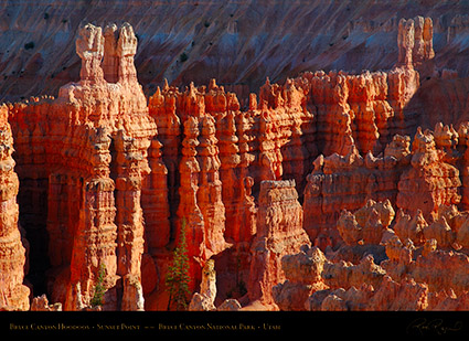 Bryce_Canyon_Hoodoos_Sunset_Point_X1880