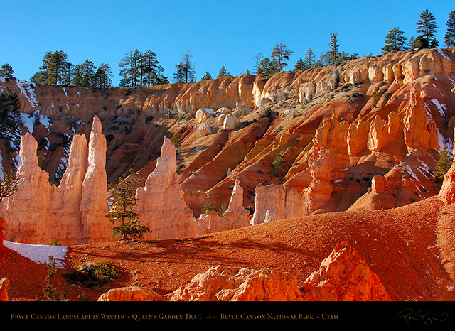 Bryce_Canyon_Queens_Garden_Trail_Winter_5389