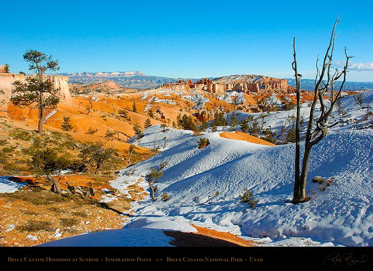Bryce_Canyon_Rim_Winter_5321