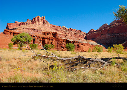 Castle_Meadow_Capitol_Reef_1390