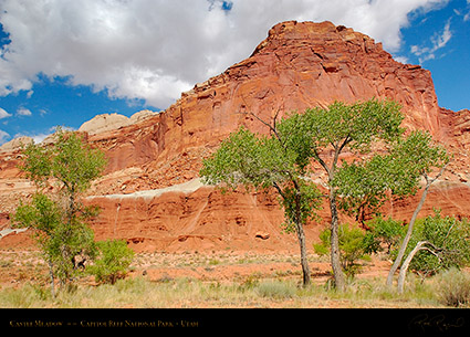 Castle_Meadow_Capitol_Reef_7139