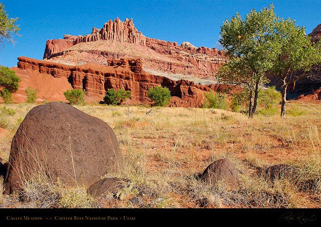 Castle_Meadow_Capitol_Reef_1387