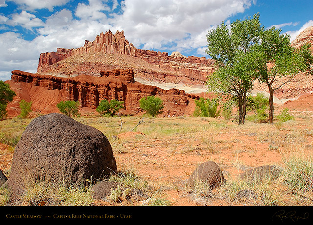 Castle_Meadow_Capitol_Reef_7137
